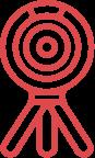 Pro Icon